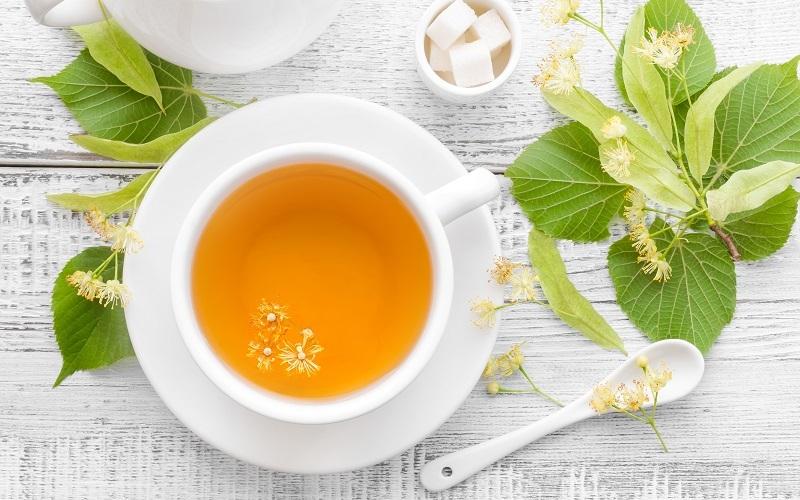 Pflanzenpower im Teebeutel