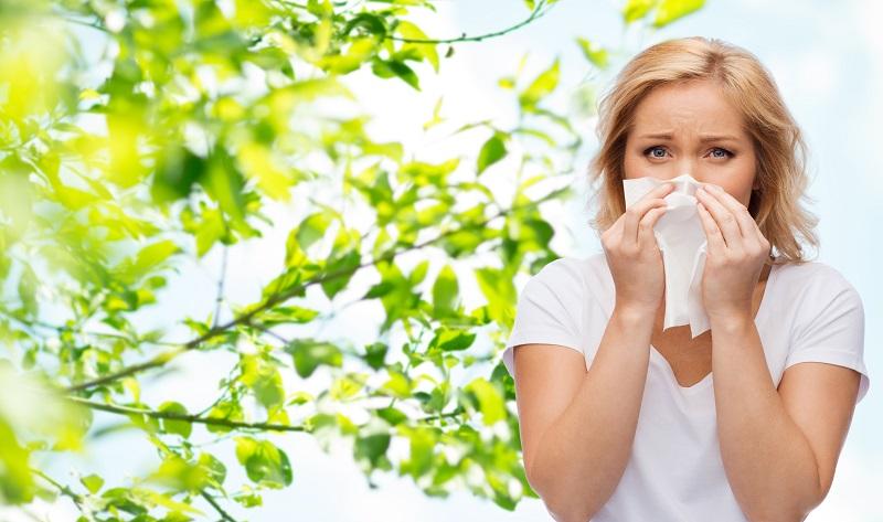 Allergien – wirksame Maßnahmen gegen Heuschnupfen und Co.